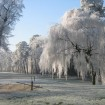 Winter in Brabant 2007